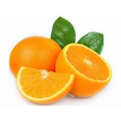 Oranges 4 unités